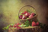 A Basket Full Apples Rowan Sunset Still Life