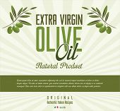 Olive background, green and black olives vector illustration