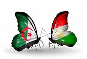 Two Butterflies With Flags On Wings As Symbol Of Relations Algeria And Tajikistan