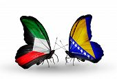 Two Butterflies With Flags On Wings As Symbol Of Relations Kuwait And Bosnia And Herzegovina