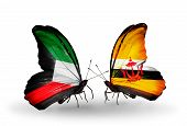 Two Butterflies With Flags On Wings As Symbol Of Relations Kuwait And Brunei