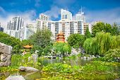 SYDNEY, AUSTRALIA- DEC 26,2014: Chinese Garden of Friendship on Dec 26, 2011 in Sydney, Australia. Garden was designed by Sydney's Chinese sister city, Guangzhou in China, officially opened in 1988.