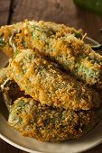 pic of jalapeno  - Homemade Breaded Jalapeno Poppers with Cream Cheese - JPG