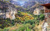 Montain Landscape