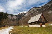Typical alpine landscape, Bohinj, Slovenia