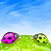 picture of oxen  - Ladybird With Ox - JPG