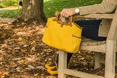 stock photo of bench  - Woman holding yellow purse and sitting on bench in the park - JPG