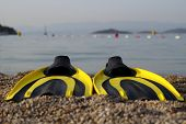 pic of flipper  - yellow and black colored flipper over the sands - JPG
