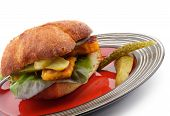 image of plate fish food  - Homemade Fish Burger with Fish Sticks Lettuce Gherkins and Whole Wheat Bread on Red Stripped Plate closeup on white background - JPG