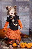 stock photo of gourds  - Adorable toddler with giant pumpkins - JPG
