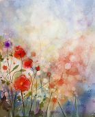 foto of poppy flower  - Water color painting red poppy flowers - JPG