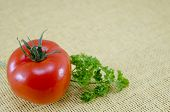 foto of plum tomato  - Raw tomato on a covered table with fresh parsley - JPG