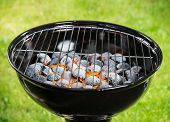 pic of blisters  - Garden grill with blistering briquettes - JPG