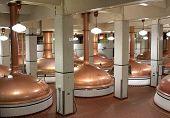 Beer Kettles In Brewery