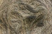 stock photo of hay bale  - Detail of a big bale of hay after harvest - JPG