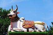 stock photo of hindu  - Nandi  - JPG