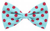 picture of bow tie hair  - Hair bow tie turquoise blue with red dots - JPG
