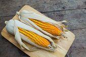 image of corn-silk  - Organic dry brown corn - JPG