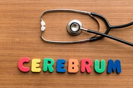 picture of cerebrum  - Cerebrum colorful word with Stethoscope on wooden background - JPG