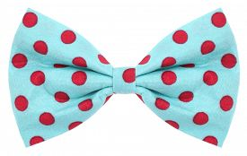 stock photo of bow tie hair  - Hair bow tie turquoise blue with red dots - JPG