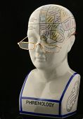 Phrenology Head With Reading Glasses