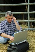 stock photo of farmworker  - Man with a cell phone and a laptop computer - JPG