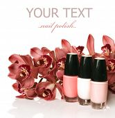 picture of nail salon  - Nail Polish - JPG