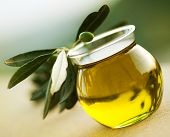 stock photo of drop oil  - Olive Oil - JPG
