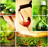 Wine.Beautiful Trauben-Collage