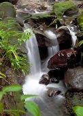 River And Small Falls From Emerald Pool, Dominica