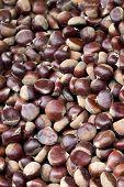 Chestnuts At Farmer'S Market