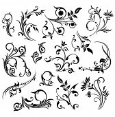Abstract ornament illustration with floral design elements, vector