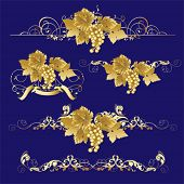 Golden Grapes.  All elements and textures are individual objects. Vector illustration scale to any s