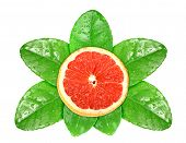 Grapefruit Fruit On Green Leaf With Dew