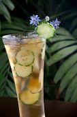 Ginger Cucumber Iced Tea