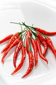 Hot Red Chili Peppers