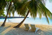 Maldives. Paradise On Earth.empty Hammock Between Palms Trees At Sandy Beach. View Of Nice Tropical  poster