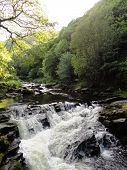 image of backwoods  - River forest waterfall landscape photographed at Watersmeet near Lynmouth in Devon - JPG