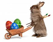 stock photo of fluffy puppy  - Cute Easter bunny rabbit with a little wheelbarrow and some painted Easter eggs isolated on white CG - JPG
