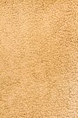 Wide View Of Some Brownish Carpet