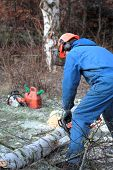 Man cutting wood with chainsaw protective safety clothes