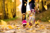 stock photo of sunshine  - Close up of feet of a runner running in autumn leaves training exercise - JPG