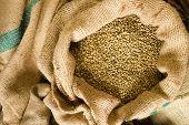 Raw Coffee Seeds Bulk Burlap Bag Agriculture Bean Produce