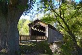Covered Bridge Thornapple