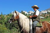 Man on horseback, Romeria San Bernabe, Spain.