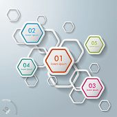 White Hexagons Infographic
