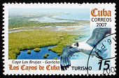 Postage Stamp Cuba 2007 Cayo Las Brujas And Sea Gull