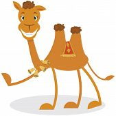 image of humping  - Cartoon camel  - JPG