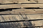 Rough weathered planks poster
