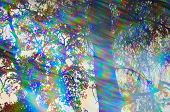 foto of prism  - Light rays spectrum colors and tree branches on a sunny day - JPG